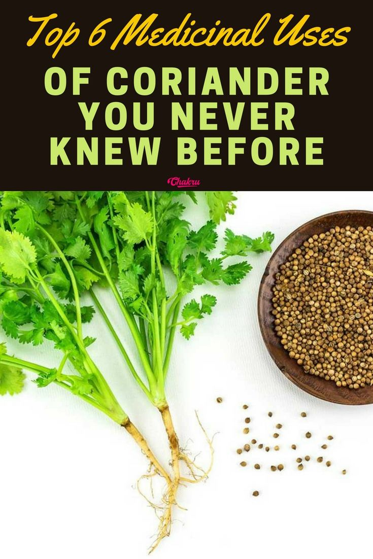 top 6 medicinal uses of coriander for your health