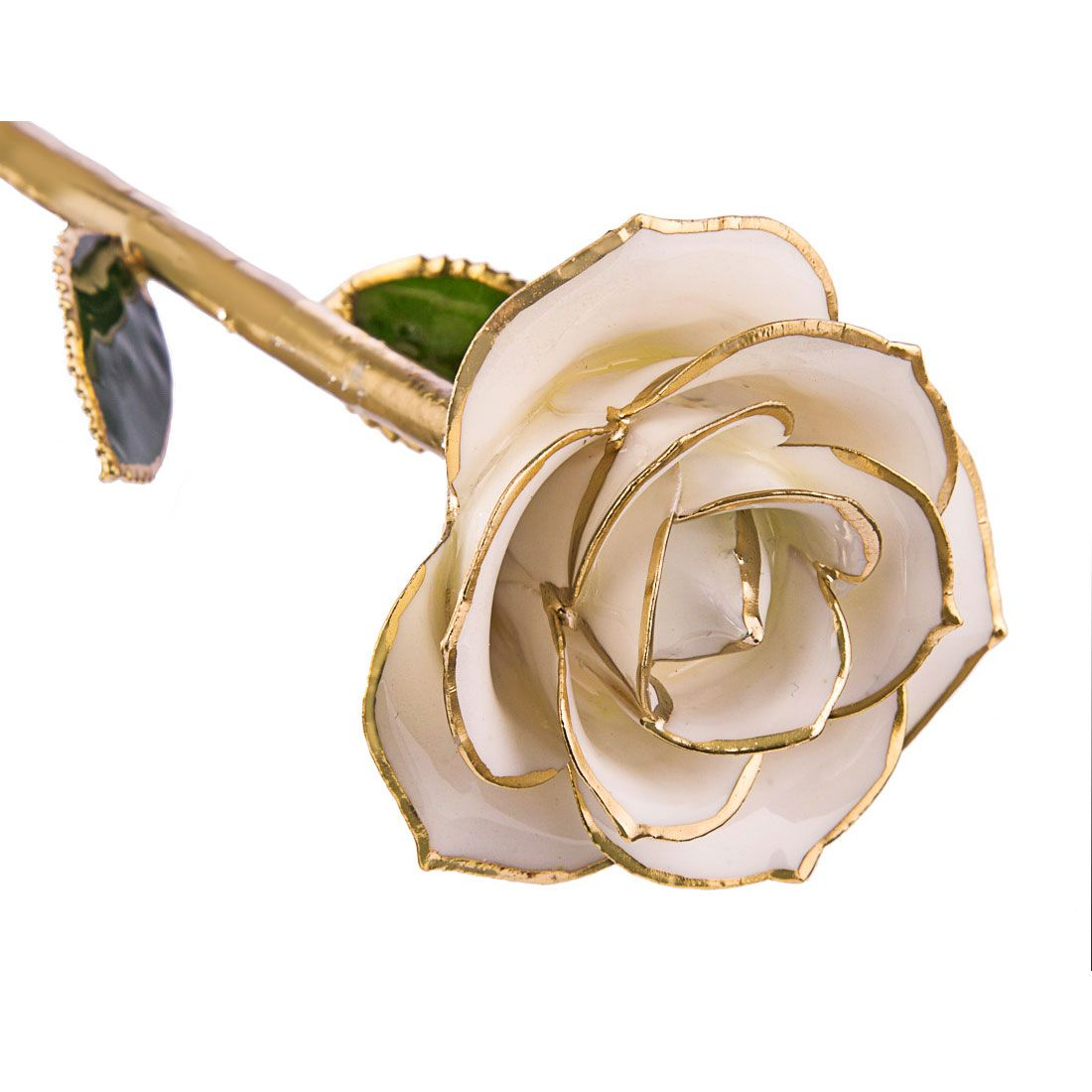 Sugar White 24kt Gold Dipped Rose Steven Singer Jewelers