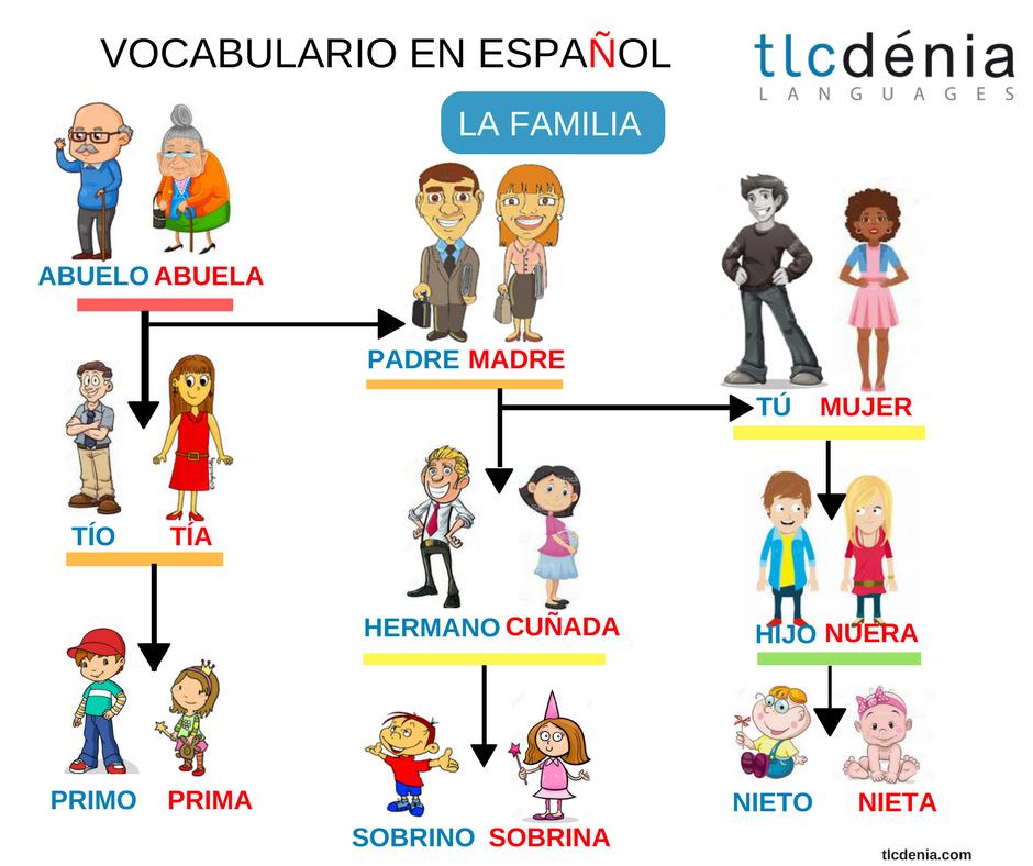 Aprende el vocabulario de la familia en español. Spanish