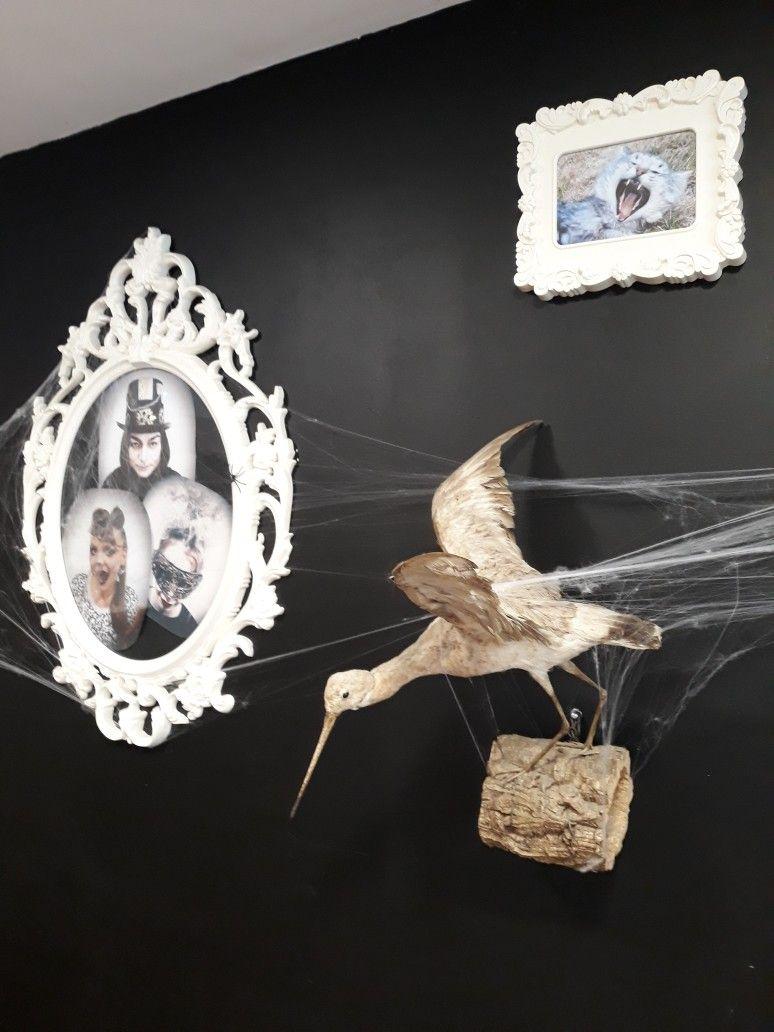 Halloween Chic Salon Eurostyl Faches Thumesnil Deco Faire Soi Meme