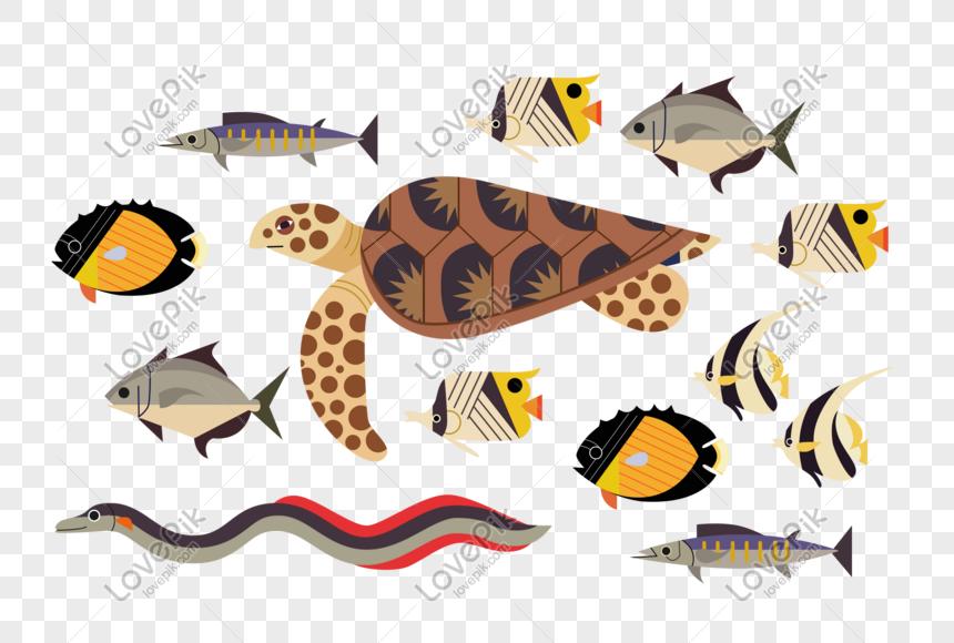 Baru 30 Gambar Hewan Kartun Kura Kura Hewan Laut Ikan Kura Kura Ikan Tropis Gambar Unduh Gratis Download Cara Menggambar Kura Kura Kura Kartun Gambar Hewan