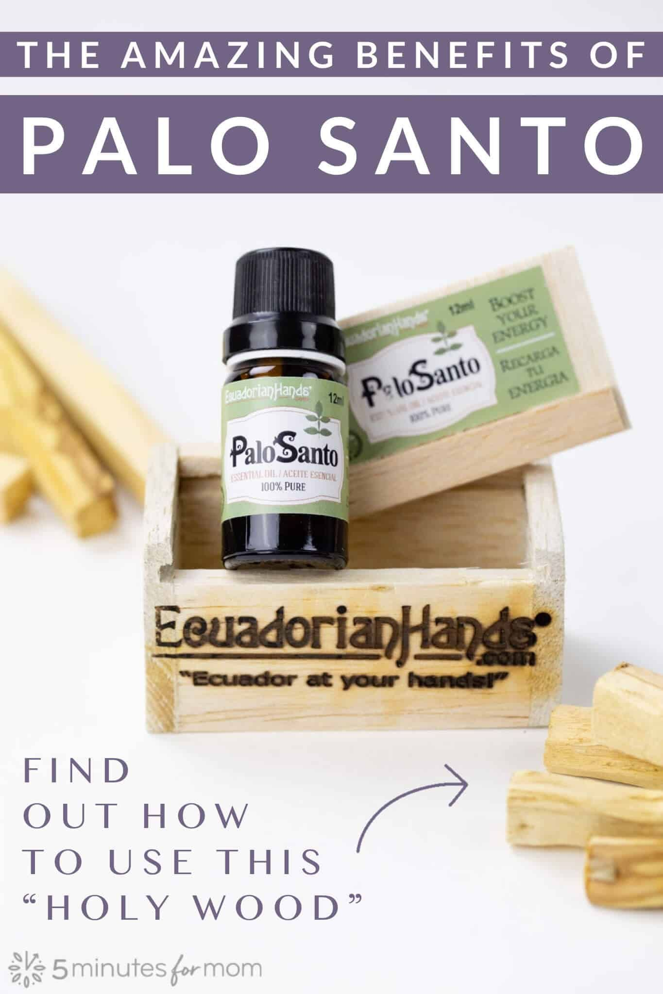 Palo santo benefits and how to use this holy wood