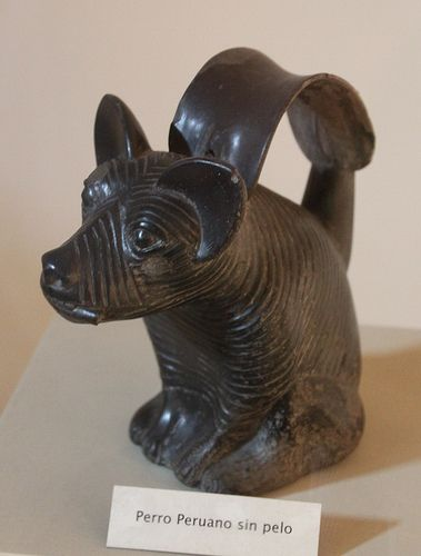 Lambayeque Sicán Culture Figure Of A Hairless Dog Dog Statue Sculpture Hairless Dog Dog Statue