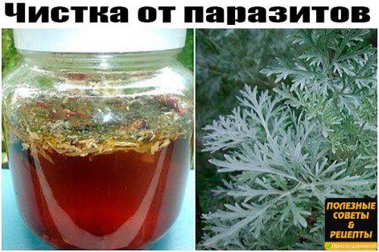 Odnoklassniki Poleznye Sovety Sovety