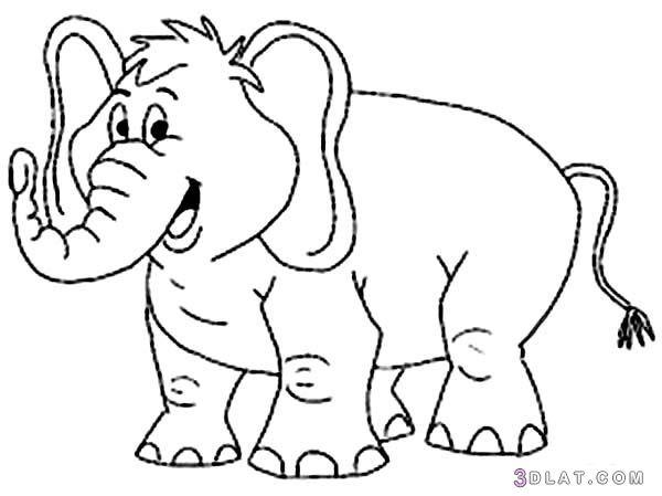 صور حيوتنات للتلوين صور فيل زرافه قرد غوريللا للتلوين Elephant Coloring Page Cartoon Coloring Pages Coloring Pages Inspirational