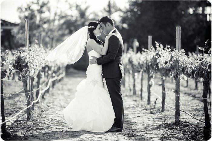 South Coast Winery Wedding