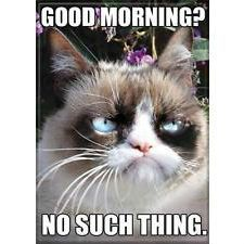 Photo of Good Morning – No Such Thing Grumpy Cat Magnet
