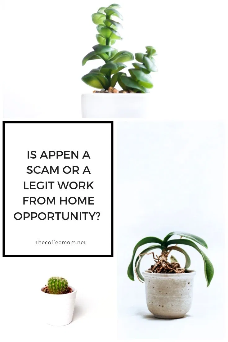 Is Appen a Scam or a Legit Work-From-Home Opportunity? — The Coffee Mom