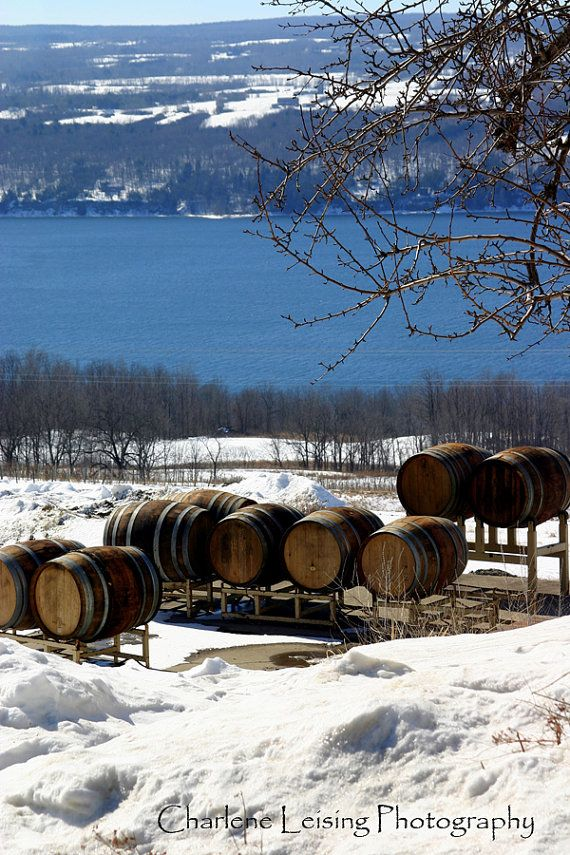 Fingerlakes Winery on Seneca Lake New York by CharleneLeisingPhoto, $50.00