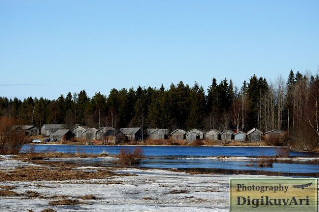 Kaukon kalalanssi, Pohjankylä, Pyhäjoki, kalalatoja,suolauspuojia,verkkolatoja