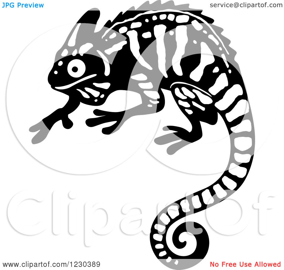 Clipart Of A Black And White Chameleon Lizard 2 Royalty Free Vector Illustration By Seamartini Graphics Free Vector Illustration Clip Art Pictures Chameleon