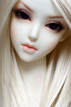 Beautiful Porcelain Do Hd Wallpaper Background Images Dengan