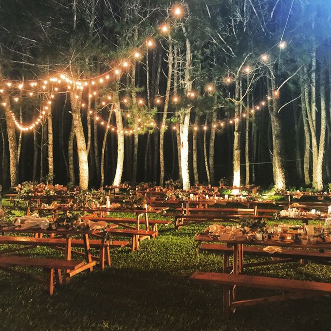 Pine Forest Camp at West Java, Indonesia. Wedding themes