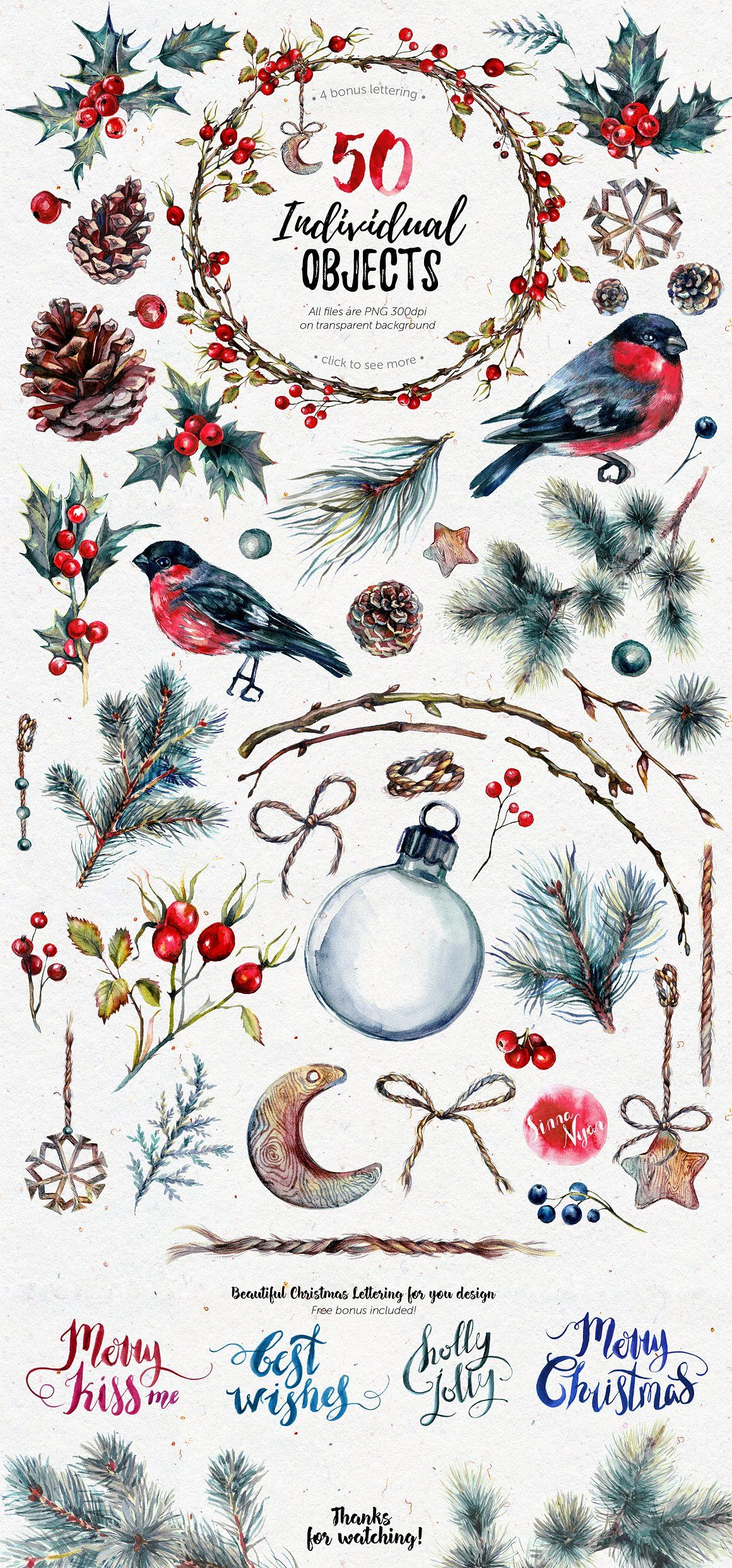Mrbullfinch Watercolor Clipart Xmas Bullfinch Xmas And Watercolor