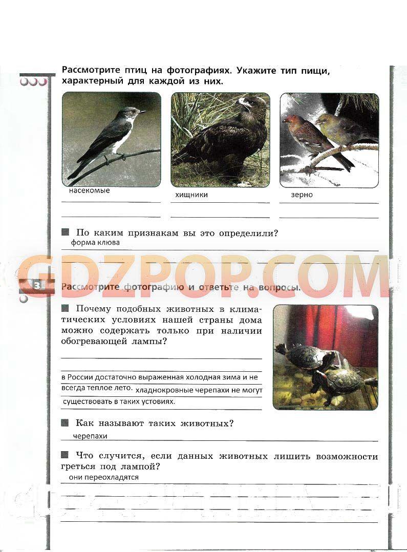 282 упражнение по русскому языку 144 гдз рамзаева 4 класс