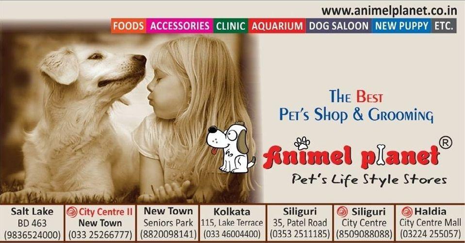 Animel Planet Best Pet Food Store In Haldia Kolkata Siliguri