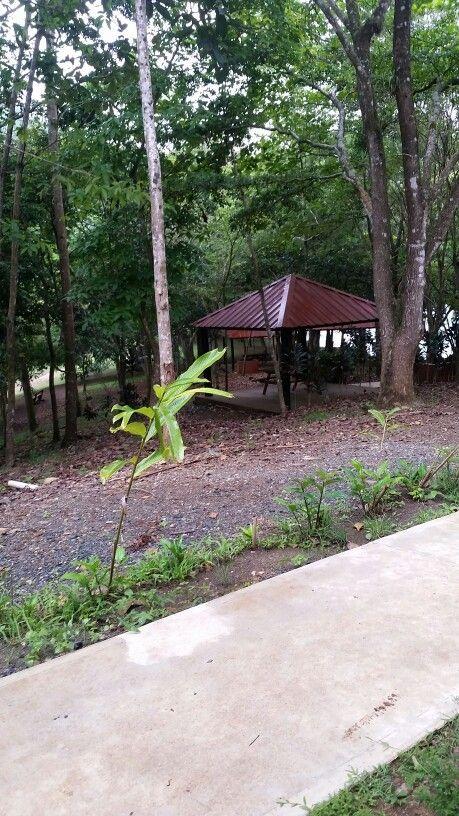 Refugio de Vida Silvestre, Yauco PR