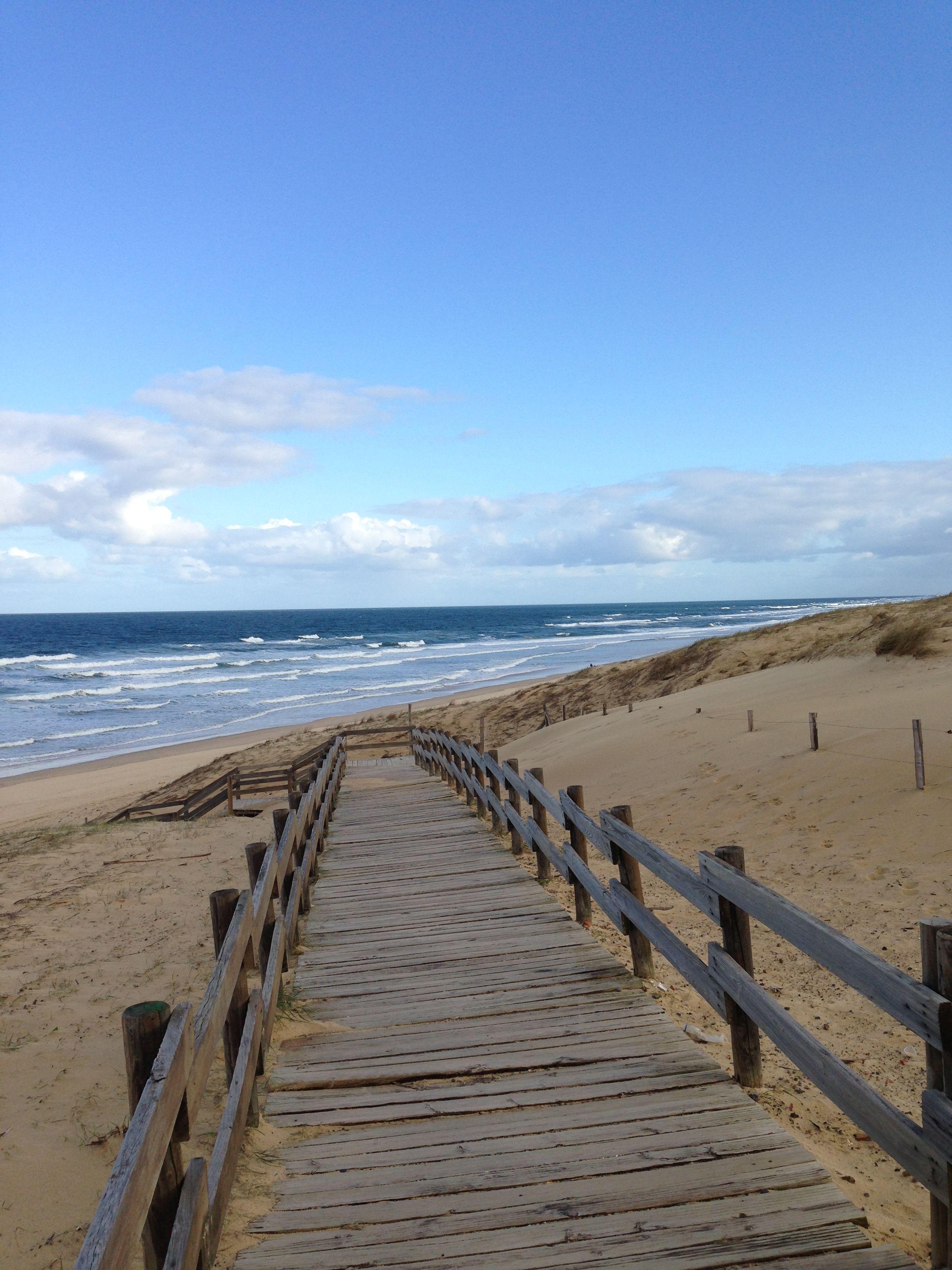Chemin vers la plage de messanges landes messanges plage bois littoral beach waves - Office de tourisme messanges ...