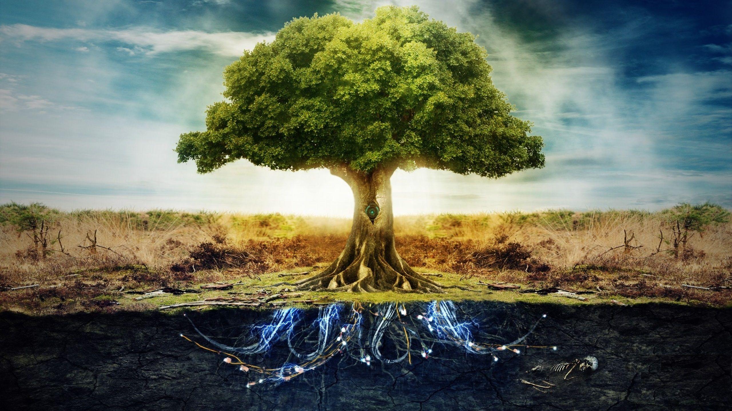Дерево с электрическими корнями. Разрешение: 2560x1440. # ...