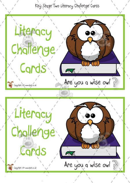 The Literacy Challenge