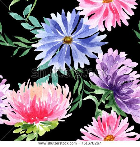 Stock Photo Wildflower Aster Flower Pattern In A Watercolor Style