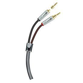 Ethereal Home Theater EXS-SWP10 Speaker Wire w/Banana Tips