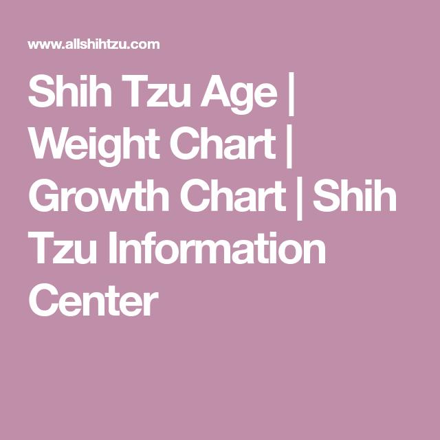 Shihtzu Weight Chart Goldenacresdogs