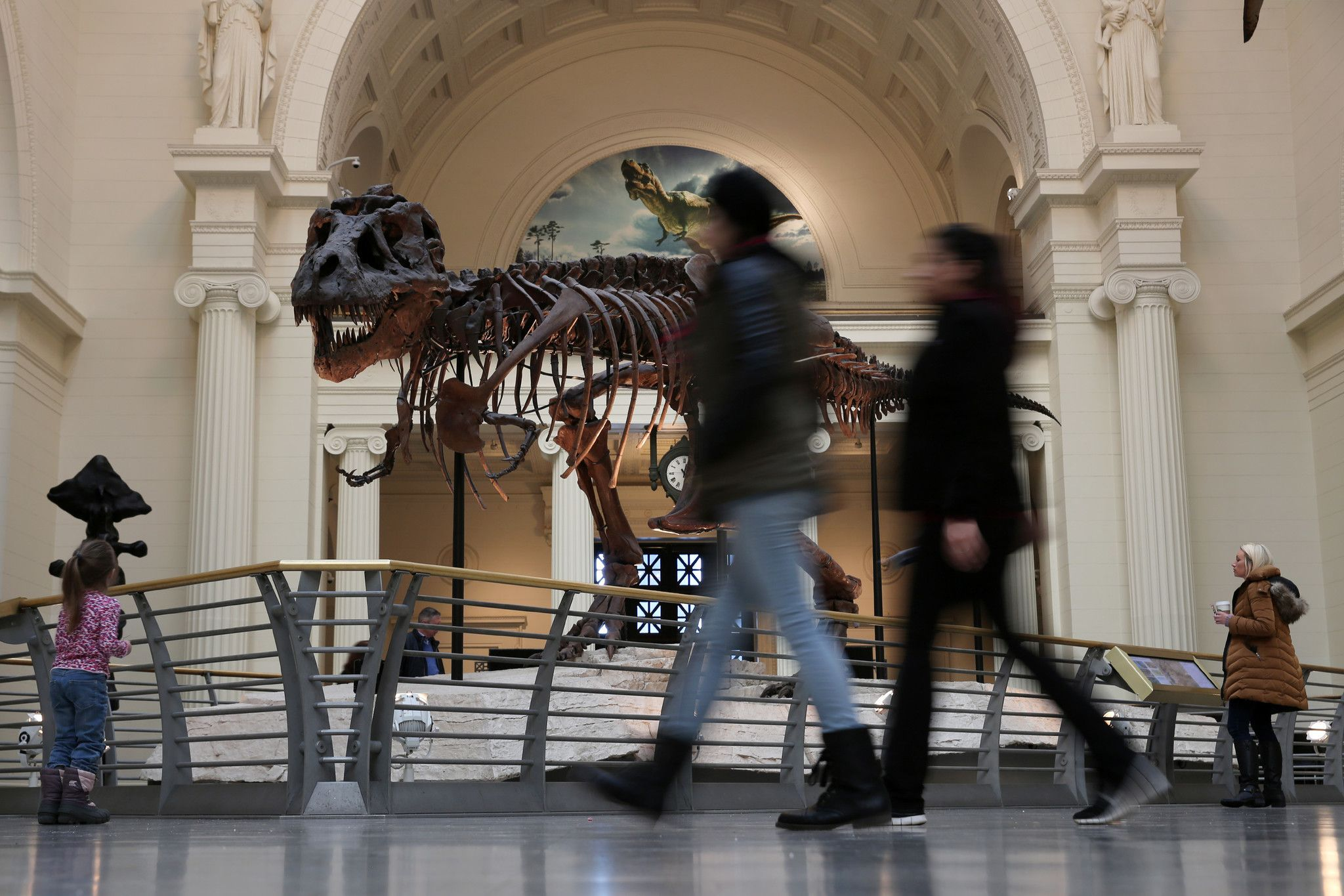 'Free Days' return to the Field Museum in 2017 Field