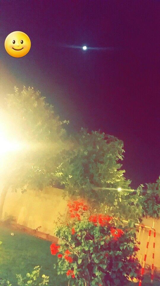 لا الشمس ينبغي لها أن تدرك القمر ولا الليل سابق النهار وكل
