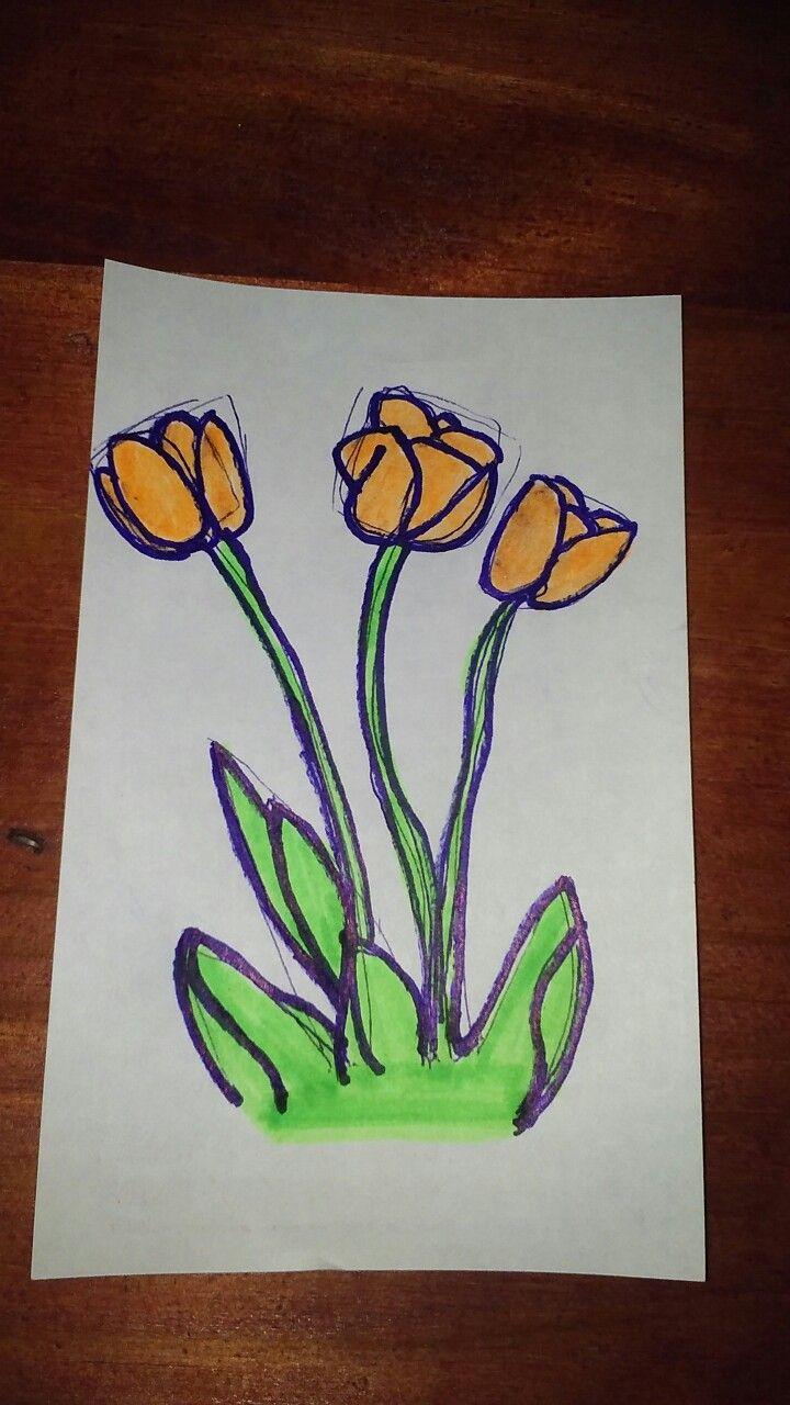 #tulipan
