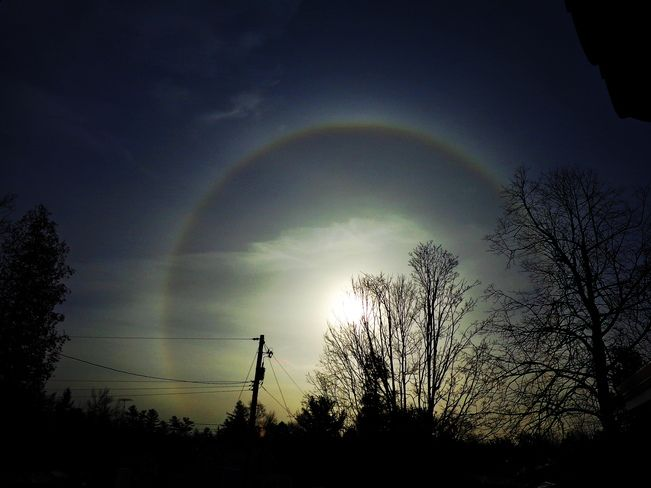 Rising Sun Dog. February 1, 2013