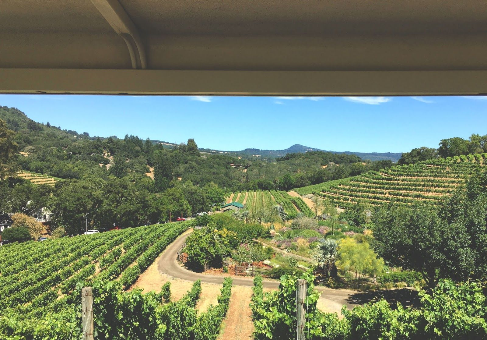Vacation Days: Sonoma (and a little bit of Napa ...