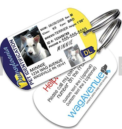 Pennsylvania Driver's License Pet Tag >>> Find out more