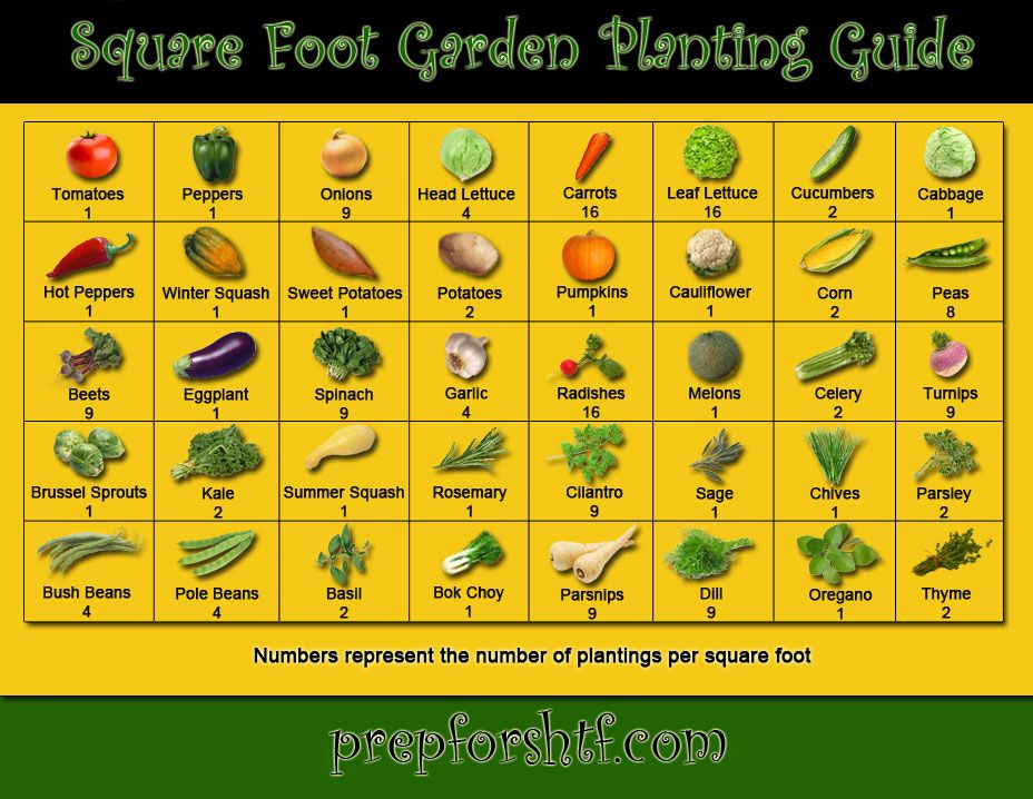 Square Foot Garden Planting Guide If youre planning on starting a