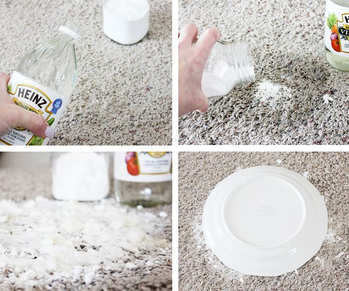 Removing Pet Stains Pour Enough Vinegar To Soak The Stain And Then Add A Small Amount Of Baking Soda Let Spot Dry For Day Or Two Before Sweeping Up