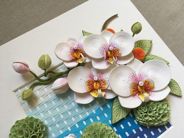 без комиссии, орхидея квиллинг фото полезным рекомендациям удастся
