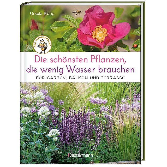 Die Schonsten Pflanzen Die Wenig Wasser Brauchen Fur Garten Balkon Und Terrasse Buch In 2020 Pflanzen Balkon Pflanzen Selbermachen Garten