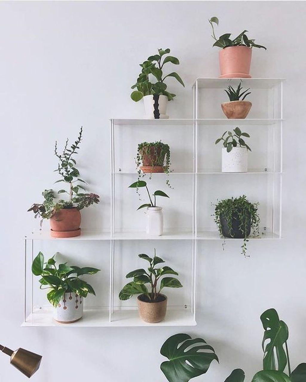 37 Diy Indoor Plant Display Ideas Diy Plants Decor Fake Plants