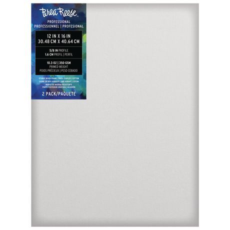 Momenta Inc Brea Reese Professional Series 12x16 Canvas 2pc In