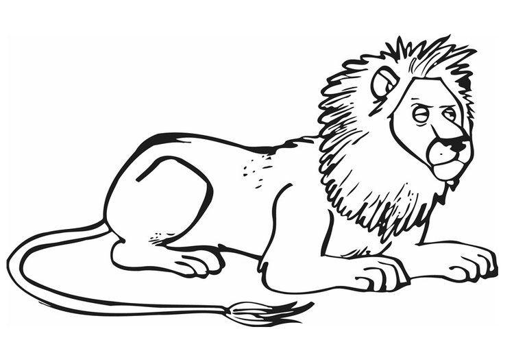 Lowe Ausmalbild Ausmalbilder Fur Kinder Ausmalbilder Ausmalen Ausmalbilder Tiere
