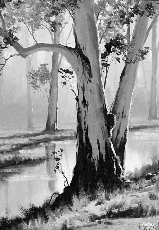 trees and water is part of Pencil art -