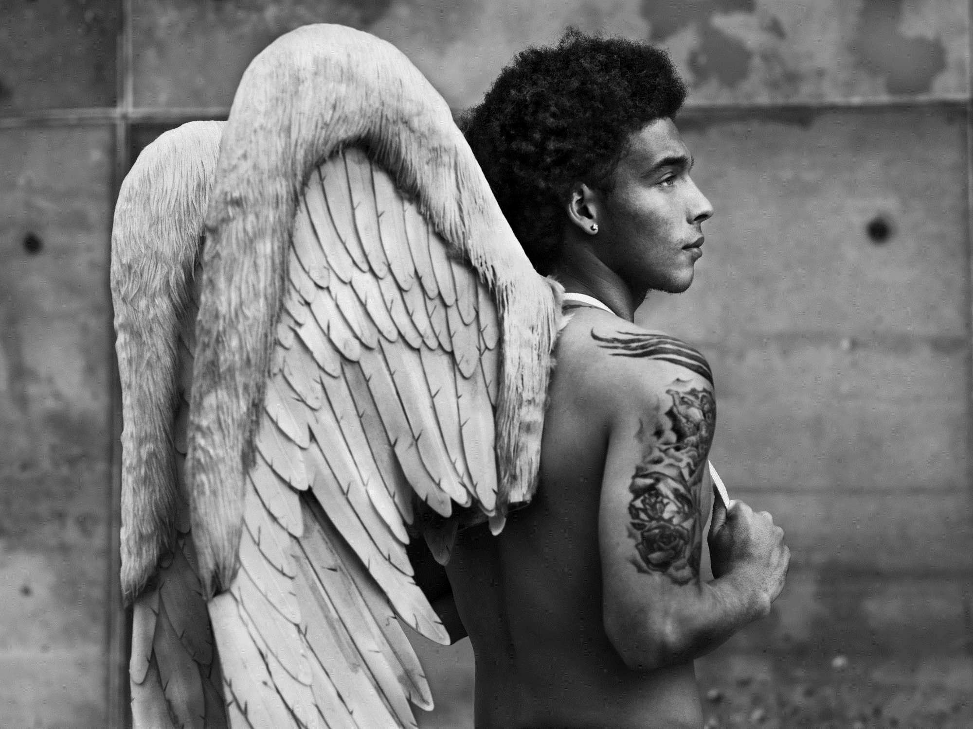 ангелы док фото такой забавный