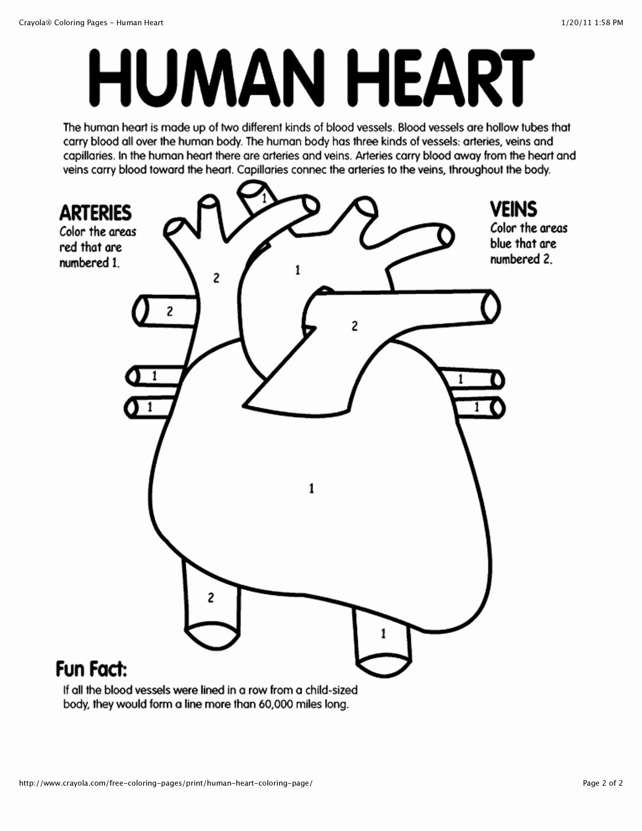 Human Body Coloring Page Inspirational Human Heart Color Pages I Had To Exit Then Return To Page Anatomy Coloring Book Heart Coloring Pages Human Body Systems