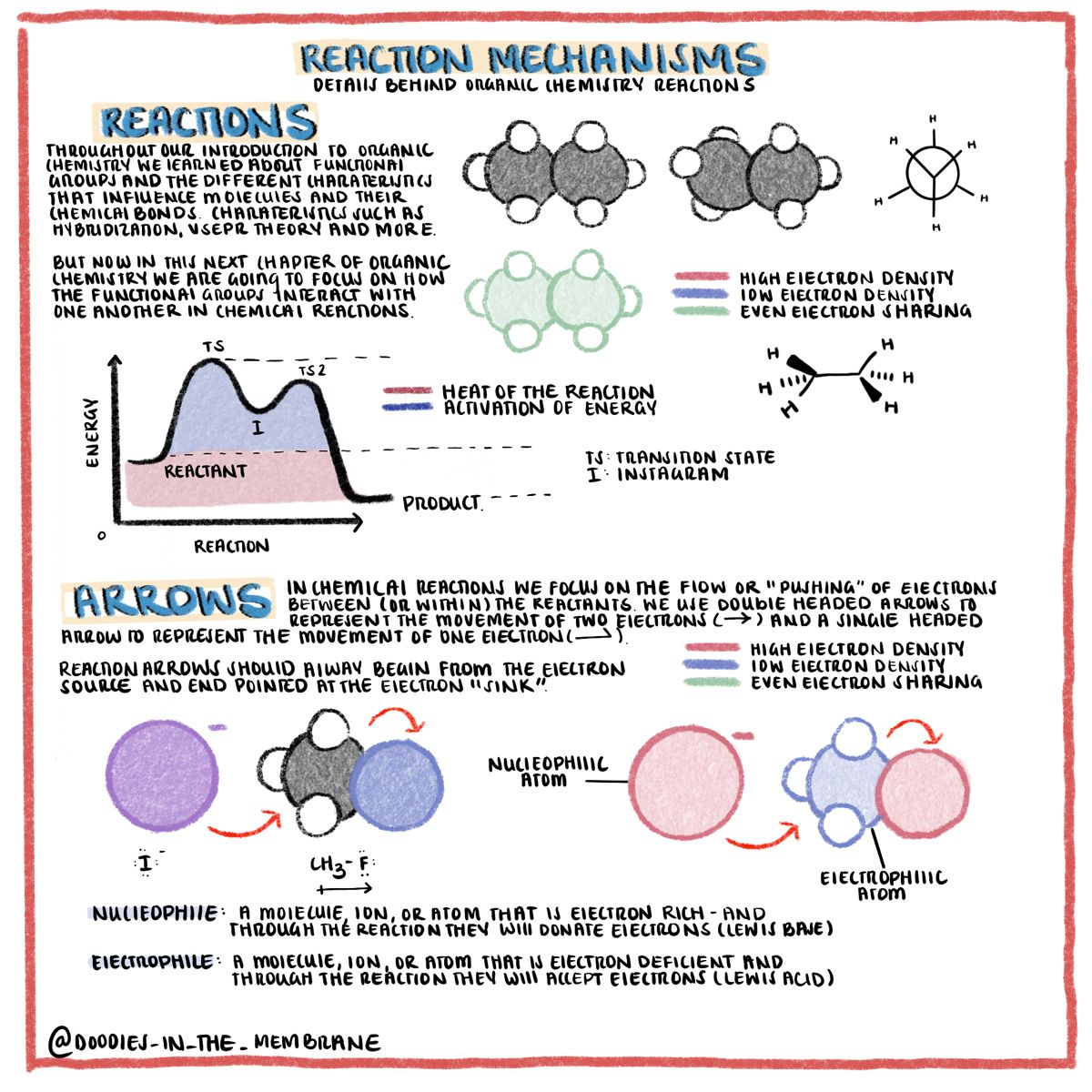 General Chemistry Educational Infographics Organic