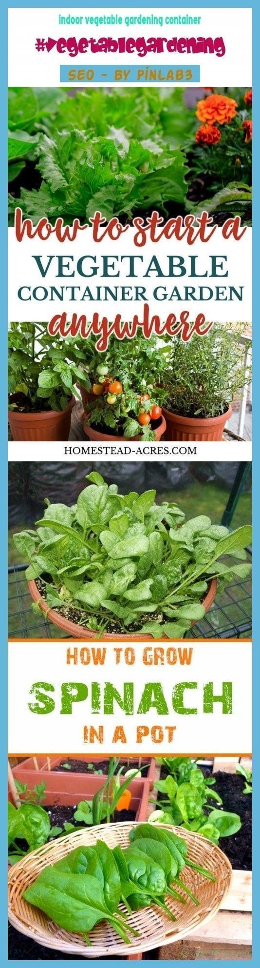 Indoor Gemüsegarten Behälter #indoor #vegetable #Garten #container #i ...-   G...#behälter #container #garten #gemüsegarten #indoor #vegetable