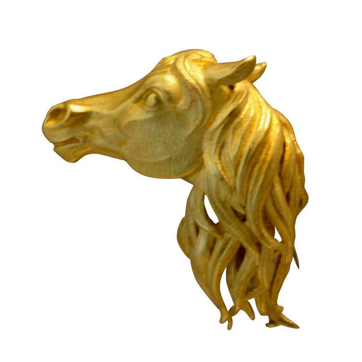 Image result for pictures of horse head and front shoulder