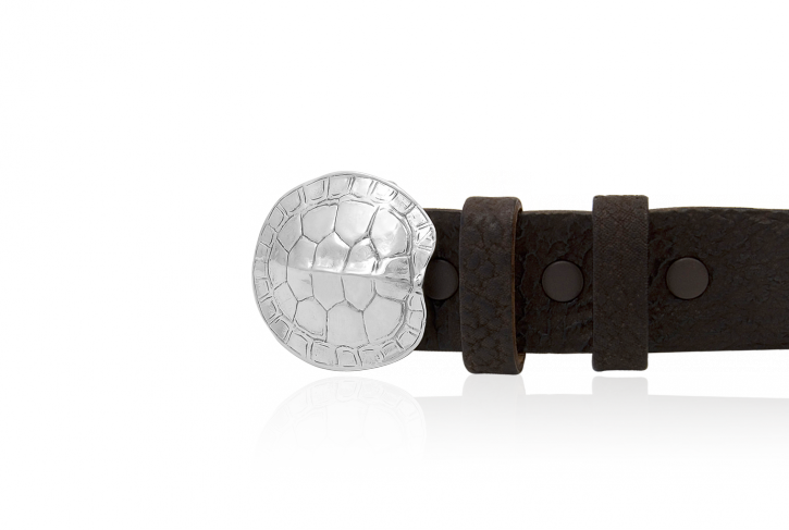 Tortoise Buckle