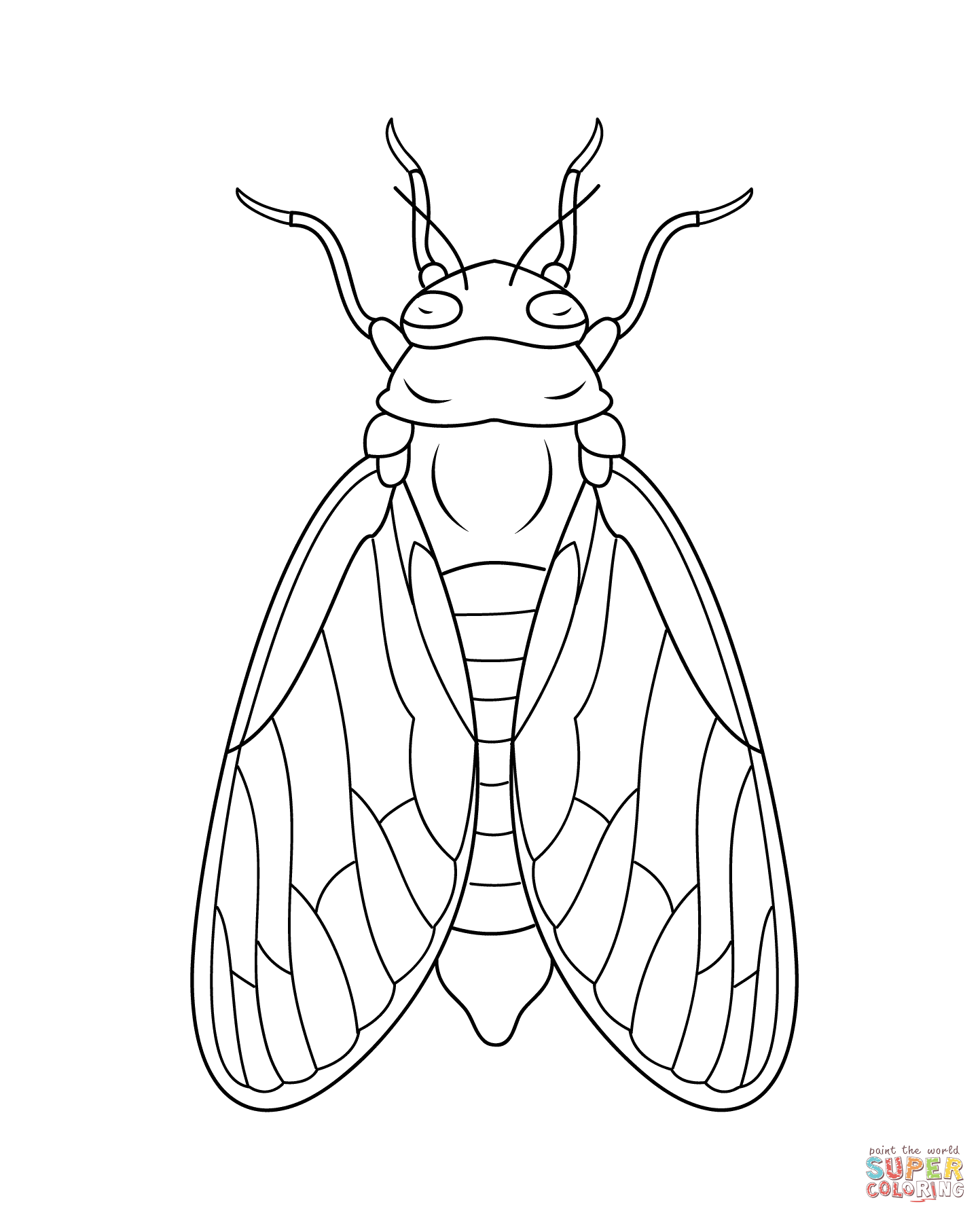 cicada super coloring tattoo pinterest