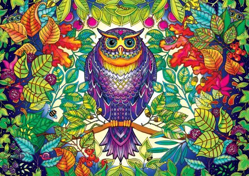 Forest Owl Secret Garden Coloring Book 280 Pieces Secret Garden Coloring Book Johanna Basford Secret Garden Johanna Basford Coloring Book