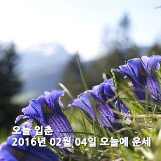 고르디쥬얼리: 오늘 입춘 2016년 02월 04일 오늘에 운세             쥐띠의 2016년 ...